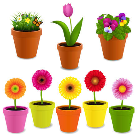 Flowers In Pot Collection With Gradient Mesh, Vector Illustration