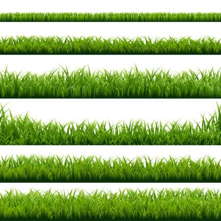 Big Set Green Grass Borders, Vector Illustration