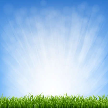 Grass With Blue Sky And Grass Border With Gradient Mesh, Vector Illustration