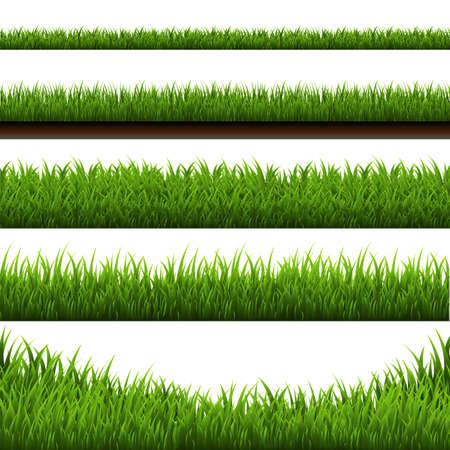 Grass Border Big Set, Vector Illustration