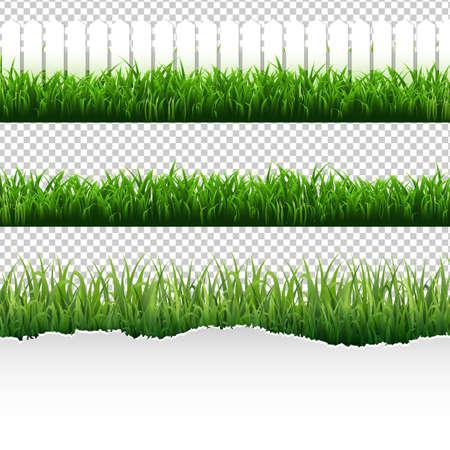 Grass Border Big Set With Gradient Mesh, Vector Illustration.
