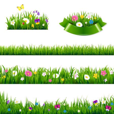Flowers Borders Big Set With Gradient Mesh, Vector Illustration