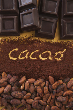 cocoa powder: cocoa beans and cocoa powder with the word cacao, and top of Chocolate Stock Photo