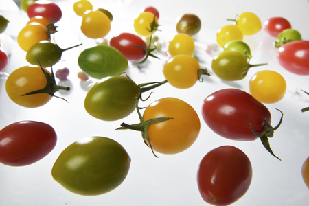 Cherry tomatoes in different colors scattered on a white space Stok Fotoğraf