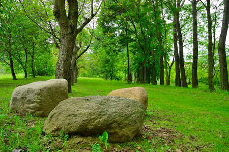 oxygene: a natural quiet park with boulders lying in the foreground