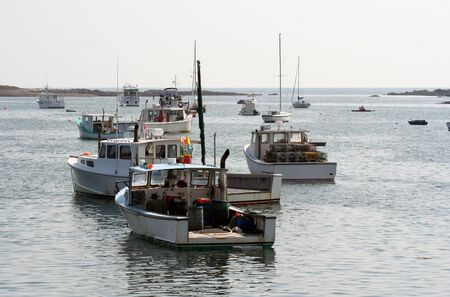 lobster: Several small lobstering and fishing boats in a small Maine harbor.