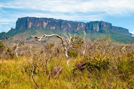 plateau: Roraima table mountain , Great Savanna, Canaima National Park, Venezuela