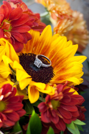 Diamond Engagement Ring on a Blooming Flower Stock Photo