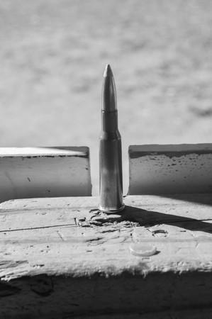Single Rifle Gun Ammo Bullet Stock Photo