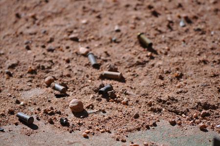 Empty .22 Caliber Gun Bullet Casings on the Ground