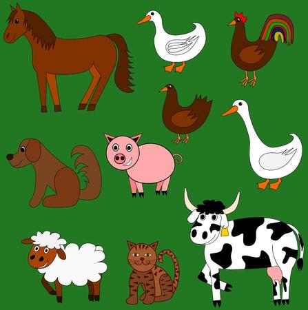 duck green: Cute farm animals