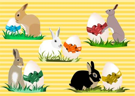 Easter bunnies Illustration