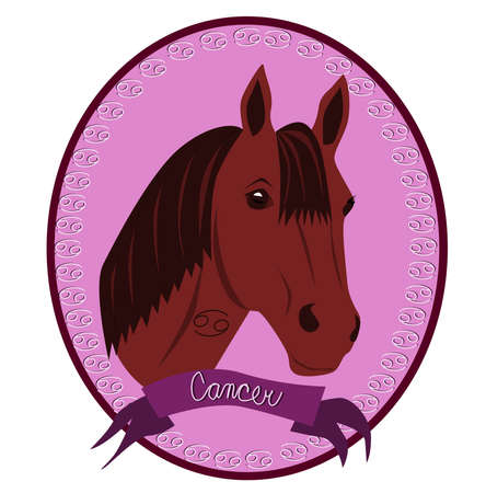 Horse - Cancer Stock Vector - 12788430