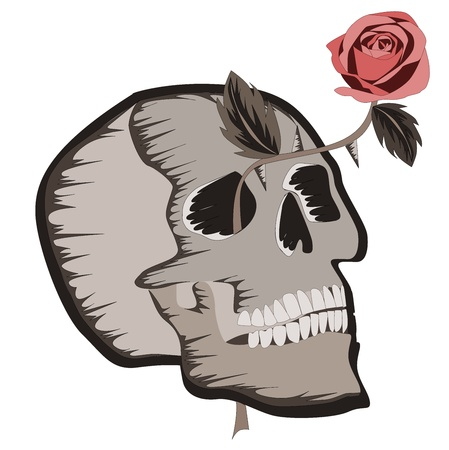 Skull with rose