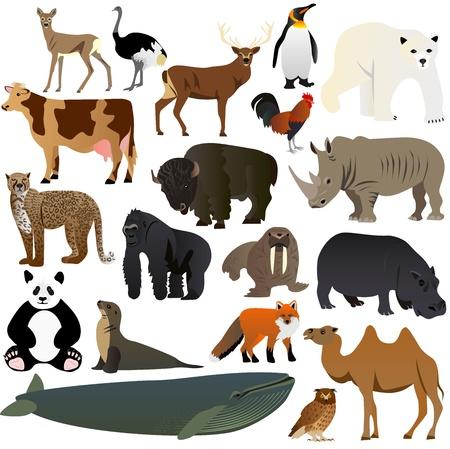 Animals set 2 Ilustrace