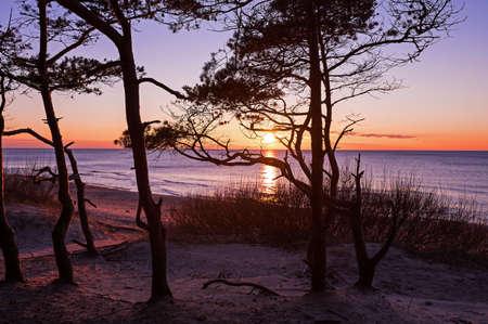 swimm: stunning sunset
