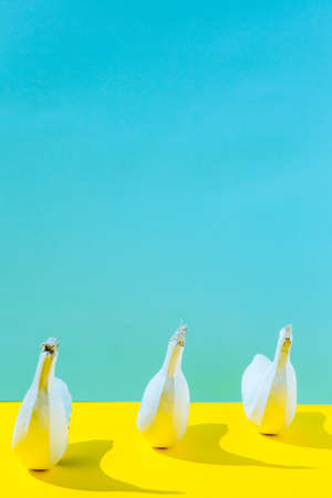 White banan on yellow and blue background Stock Photo