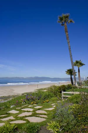 Flower garden and Palm Trees Line the beach along the sunny Southern California Coast
