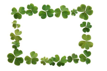 フレームやボーダー作られた新鮮な緑のクローバーの聖 Patrick s の日に最適 写真素材