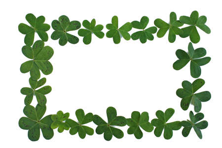 Frame or boarder made of fresh green clover perfect for St. Patrick�s Day