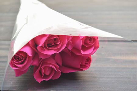 Pink rose in plastic wrap Stock Photo
