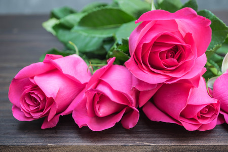 Pink rose on wooden background close-up Stock Photo
