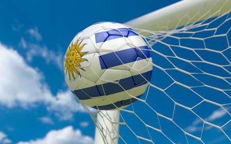 bandera de uruguay: Bandera de Uruguay y balón de fútbol, ??fútbol en red de la portería