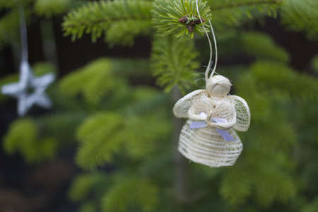 angel tree: Christmas angel on christmas tree branch, lights hanging in a tree Stock Photo