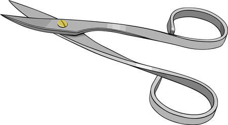 nail scissors: Nail scissors on white  Illustration