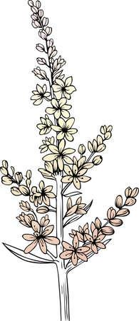 Flower on white Stock Vector - 10315314