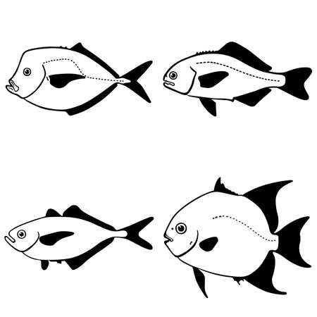fish silhouette: Fish on white Illustration