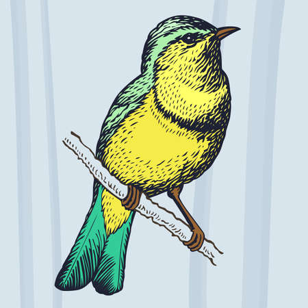 Bird on the branch on light blue background Illustration