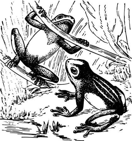 croaking: Frogs