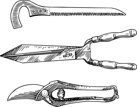 secateurs: Garden tools