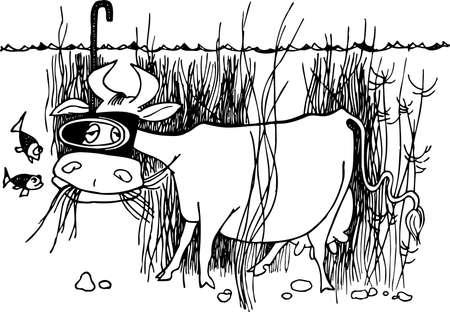 cow grass: Underwater cow Illustration