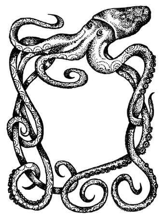 octopus: Pulpo gigante