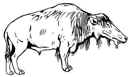 prehistorical: Prehistorical Animal Illustration