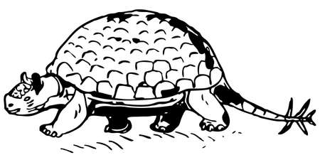 prehistorical: Prehistorical turtle