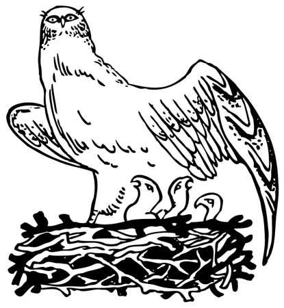 Bird with nest Stock Vector - 10402765