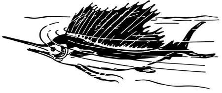 pez espada: Pez vela Vectores