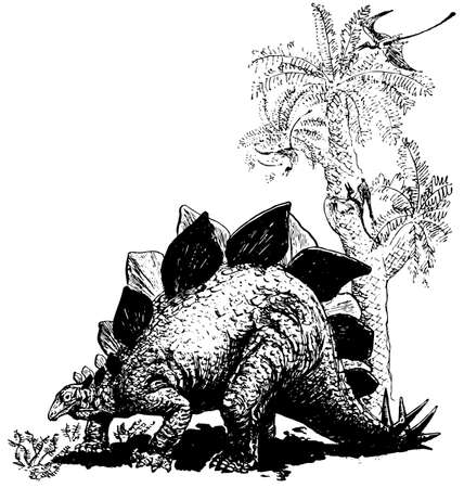 paleontology: Dino stegosaurus Illustration