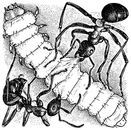 larva: Ants attacking larva