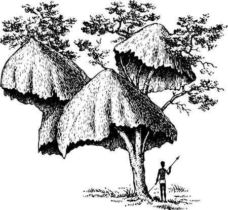 Communal nest of sociable Vector