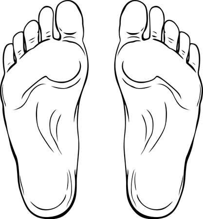 pies: Suelas Humanos aisladas sobre fondo blanco