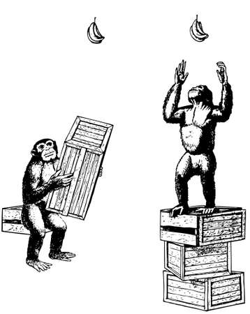 Experiment with monkeys