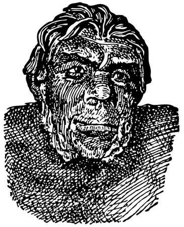 peking: Peking Man (Homo erectus pekinensis) Illustration