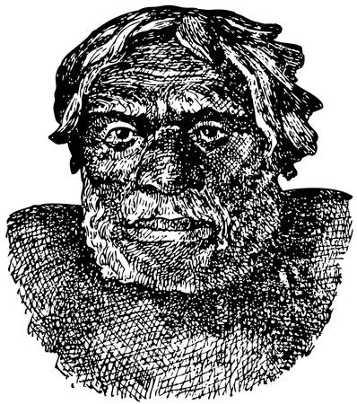 homo sapiens: Neanderthal man (Homo sapiens neanderthalensis) Illustration