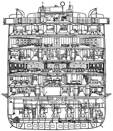 Corte de crucero en el fondo blanco