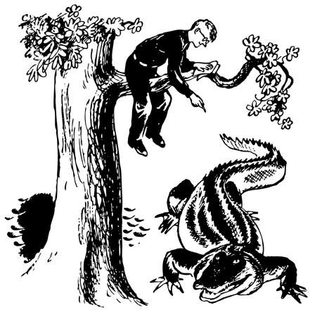 naturalist: Naturalist sitting on the tree and watching crocodile Illustration