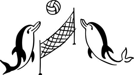 volleyball net: Dolphins playing volleyball on white background